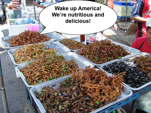 edible insects in food stall