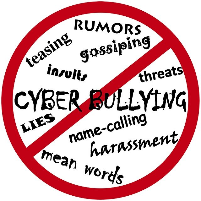 cyber bullying article