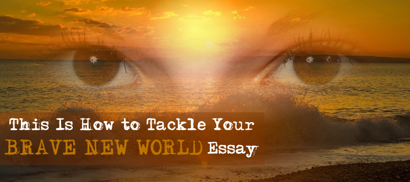 this is how to tackle your brave new world essay essay writing