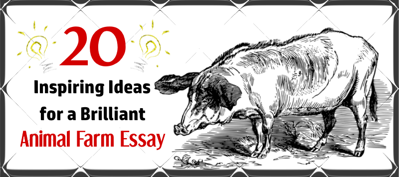 inspiring ideas for a brilliant animal farm essay essay writing