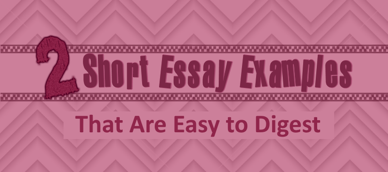 2 Short Essay Examples That Are Easy to Digest – Kibin Blog