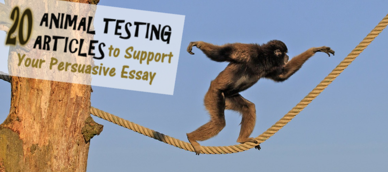 Animal Testing Articles To Support Your Persuasive Essay  Business Plan Help Perth also Analysis And Synthesis Essay  Library Essay In English