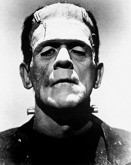 essay topics for frankenstein by mary shelley