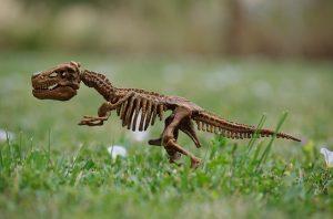 model of a dinosaur skeleton