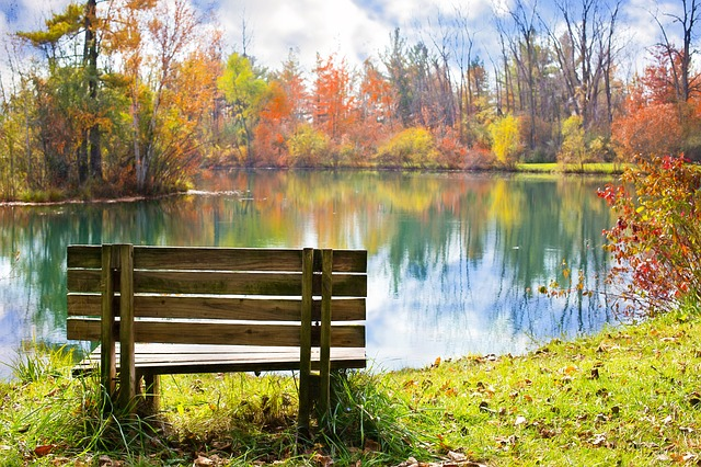 peaceful bench overlooking lake and fall foliage
